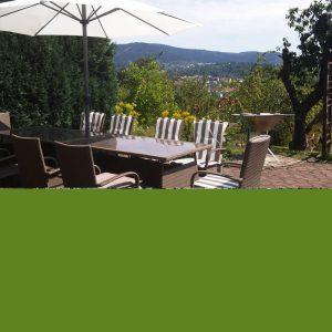 Terrasse vom Ferienhaus vom Thüringer Wald