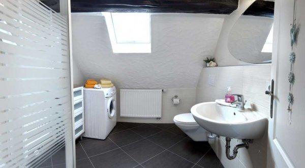Badezimmer mit Dsuche und Waschmaschine im Ferienhaus Moritz