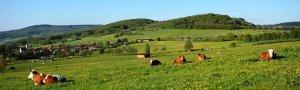 Blick auf die Landschaft um SImmershausen