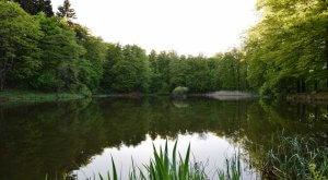 Oberer See bei Leubach